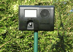 Garden Protector Ultraschall Katzenschreck mit Erdstab im Garten